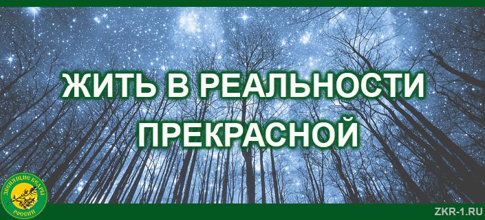 33 ЖИТЬ В РЕАЛЬНОСТИ ПРЕКРАСНОЙ