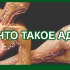 8 CHTO TAKOE AD 2